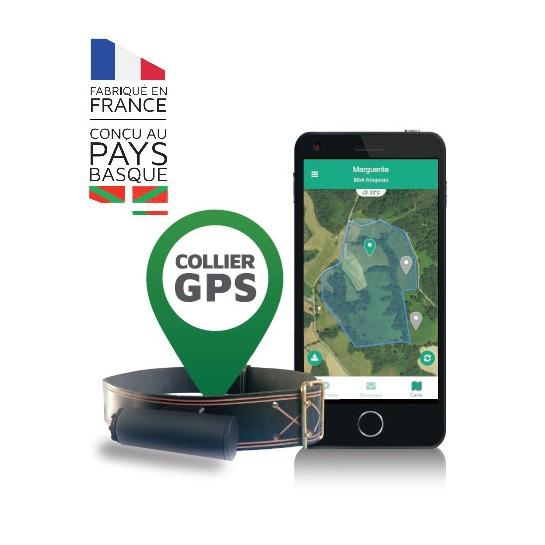 Collier GPS E-Pasto